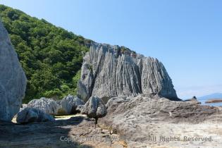 山になじんでいる岩