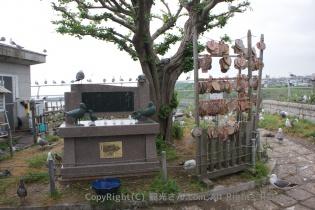 ウミネコの銅像と絵馬
