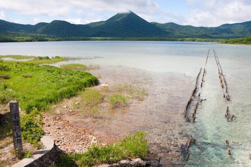 三途の川の水質