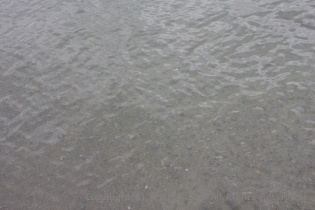 十和田湖の水