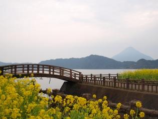 池田湖パラダイスから