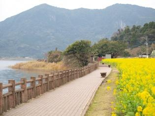 池田湖周囲を散歩