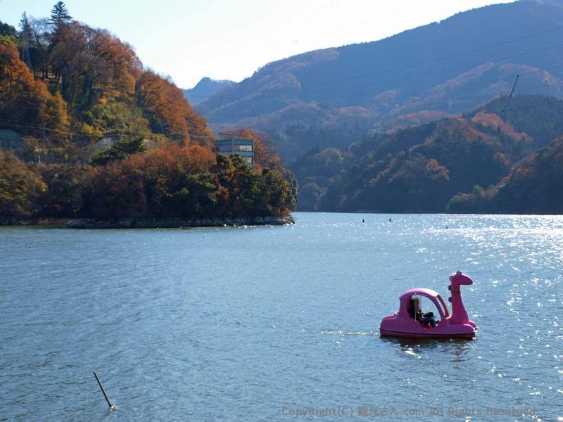 相模湖とサガシー