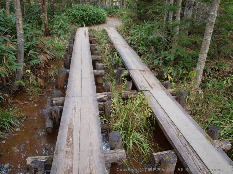 林間コースも