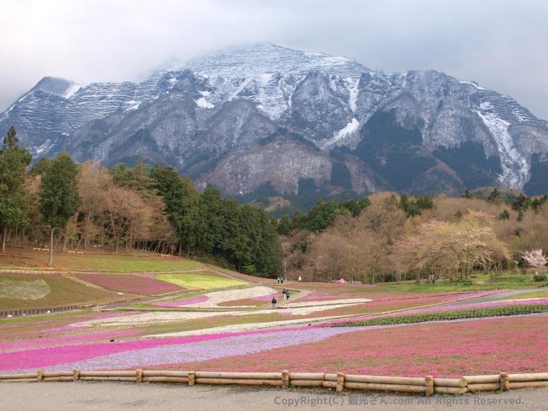 武甲山(ぶこうさん)
