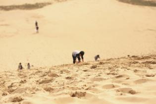 鳥取砂丘の頂上下