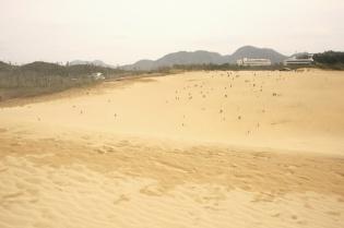 鳥取砂丘頂上からの眺め1