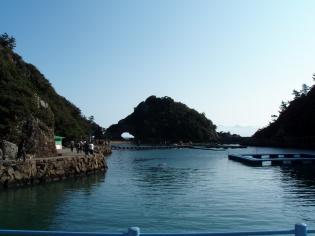 自然の入江を利用したイルカやシャチの飼育プール