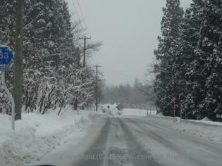 スキー場へ向かう道路